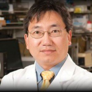 Xuejun  Wen, M.D., Ph.D. - VCU College of Engineering. Institute for Engineering and Medicine, Room 398, Richmond, VA, US