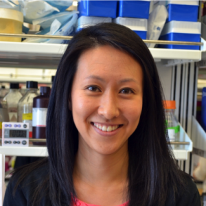 Profile picture for Priscilla Hwang, Ph.D.