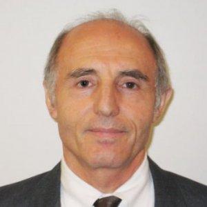 Profile picture for Hadis Morkoç, Ph.D.