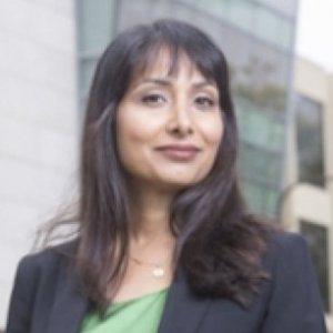 Profile picture for Veena Dubal