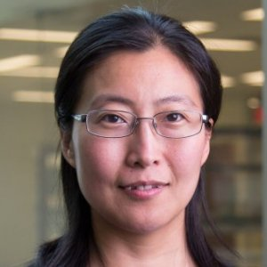Profile picture for Hong Zhao, Ph.D.