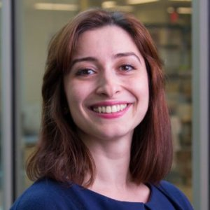 Laleh Golshahi, Ph.D. - VCU College of Engineering. Richmond, VA, US