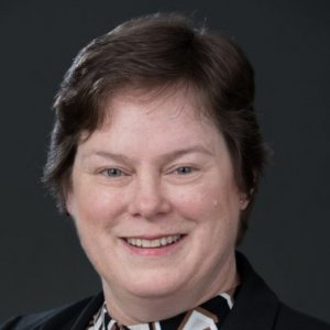 S. Megan Berthold, Ph.D., LCSW - University of Connecticut. Hartford, CT, US