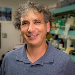 Profile picture for Ethan Bier, Ph.D.