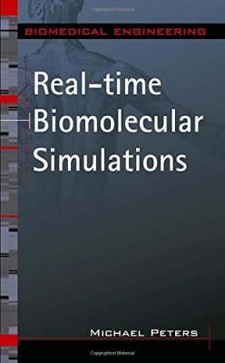 Image for publication on Real-time Biomolecular Simulations
